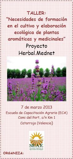 Taller necesidades de formaci n en el cultivo y for Cultivo de plantas aromaticas y especias