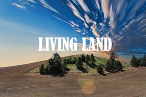 Campaña Living Land