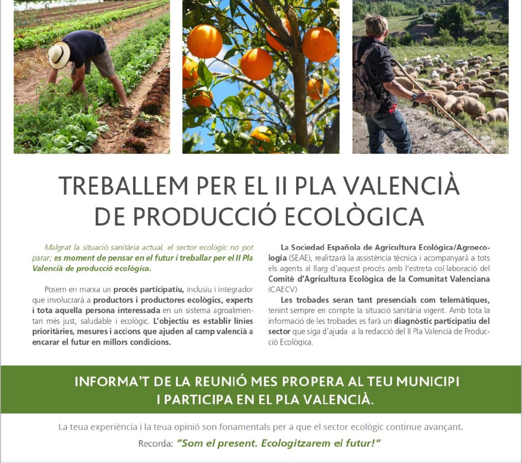 APLAZADA - Reunión con operadores ecológicos de la comarca La Ribera - II Plà Valencià Producció Ecològica @ Estació Experimental Agrària Carcaixent (València)